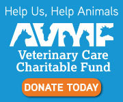 Through the American Veterinary Medical Foundation's Veterinary Care Charitable Fund, our hospital is able to help animals rescued from abuse and neglect and the pets of clients facing personal hardships. Your donations to the AVMF on behalf of our hospital will help us help animals. Click on the AVMF donate button to make your tax deductible donation.